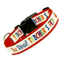 Teacher Peach's Pet Collar